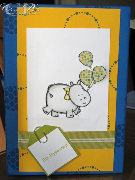 hippo-july-o9
